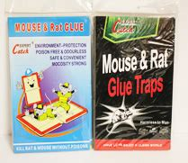 trap kitchen books rat mouse range eagle and carry wholsales