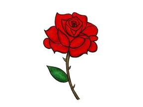 Dozen Red Roses Red Rose Cartoon Pictures To Pin On Pinterest Pinsdaddy