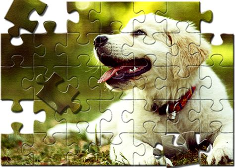 puzzle effects adobe community break an image into puzzle pieces in photoshop sitepoint