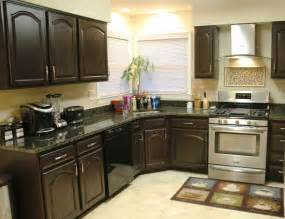 repainting kitchen cabinets ideas home design ideas home decoration ideas