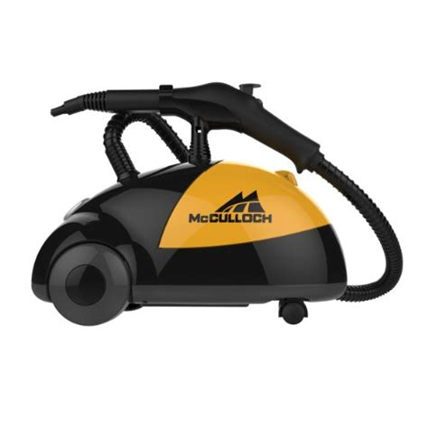 steam cleaner for bed bugs bed bug steamer bed bug treatment site