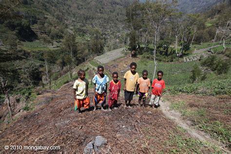 Kaos Papua Anak Wamena Asli konflik tanah hukum mandul lemahkan hak masyarakat adat atas tanah mongabay co id