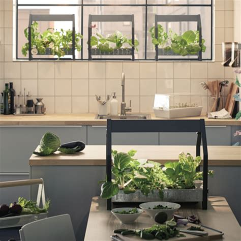 ikea indoor garden ikea launches hydroponic indoor gardening kit ideal home