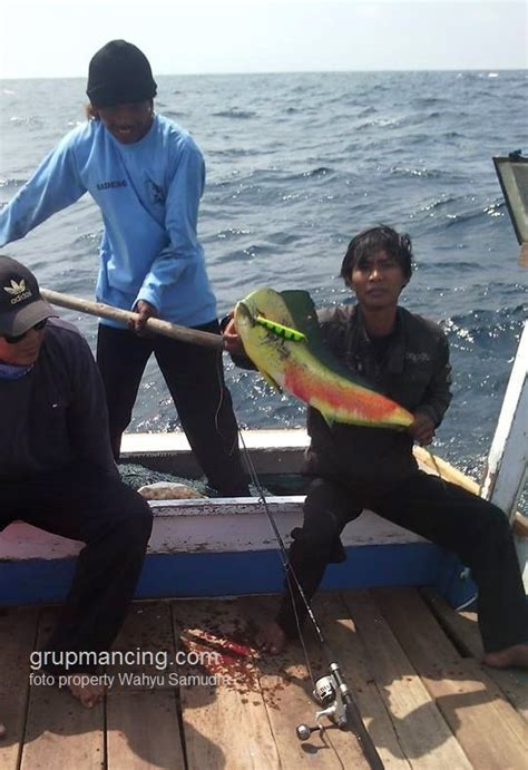Pancingan Buat Di Laut trip mancing laut via jogja tengiri gt tuna lemadang
