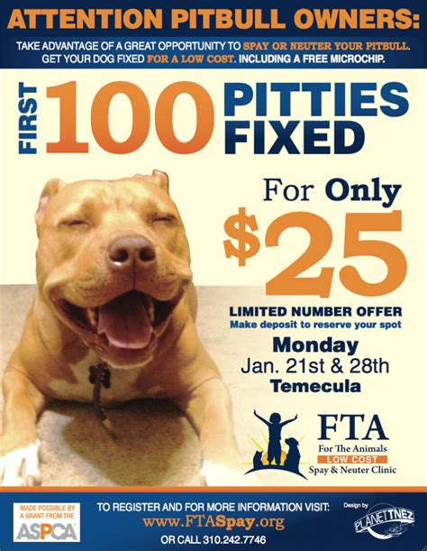 Low Cost Pit Bull Spay Neuter in Temecula CA