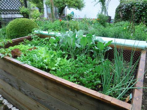 Mein Schöner Garten Hochbeet by Bepflanzung Hochbeet Bepflanzung Hochbeet Sparkasse Neuss