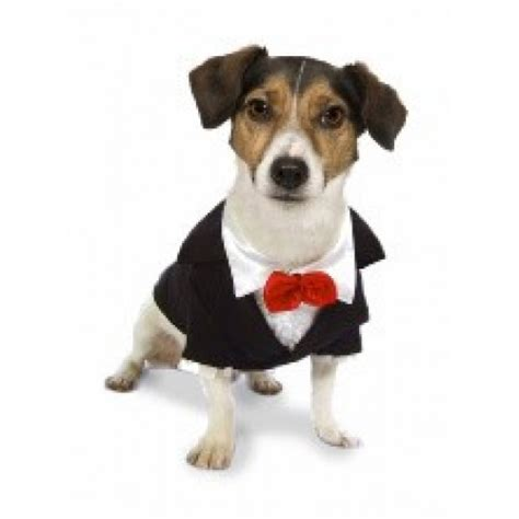 puppy tuxedo tuxedo dress the clothes for your pets