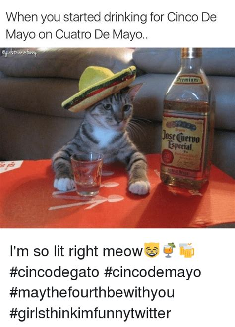 Memes 5 De Mayo - when you started drinking for cinco de mayo on cuatro de