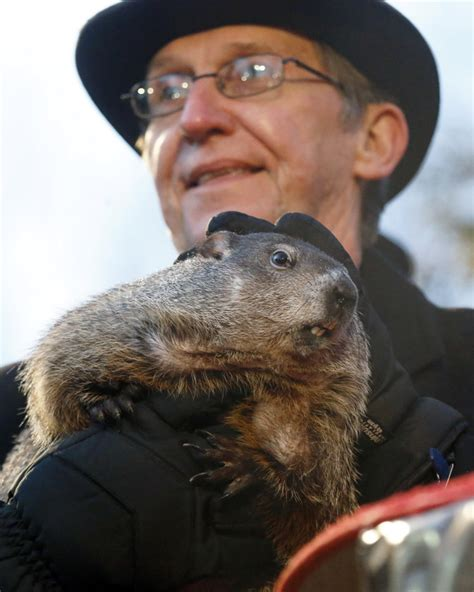 groundhog day pa pennsylvania s punxsutawney phil predicts early