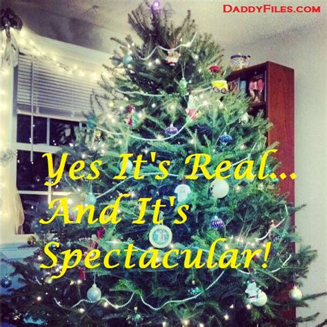 christmas trees should you buy real or fake