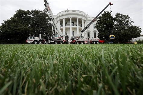white house renovation trump trump spends 1 75m on white house renovations the