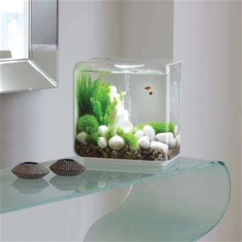 dual purpose fish tank design ideas interior design