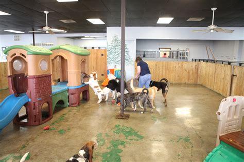 animal lodge