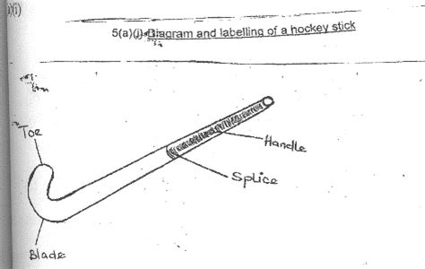 diagram of hockey stick physical education paper 1 may june 2009
