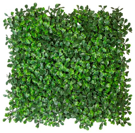 Artificial Boxwood Hedge Mat by Artificial Boxwood Hedge Mat Uv Medium 10 25 Sq Ft Artificial