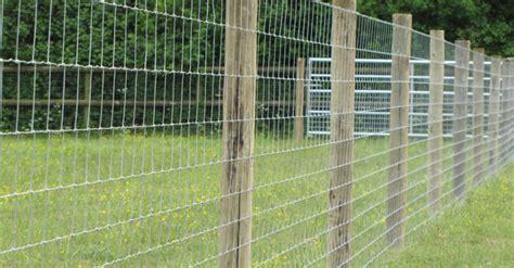 llamas alpacasessex field fencing