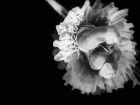 rene clair relache ren 233 clair fleurmach