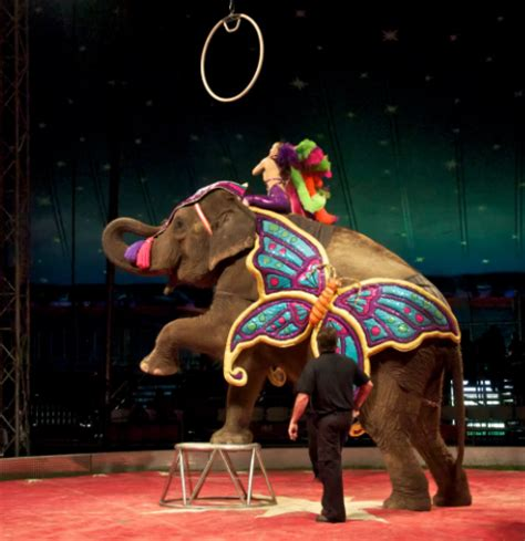 Barnes Circus carson barnes circus