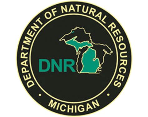 mi dnr boating michigan boating laws regulations boat ed 174