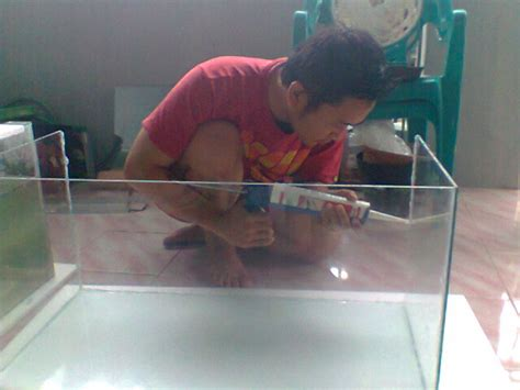 Aquarium Kaca Ukuran 60x30x35 Ketebalan Kaca 5mm hobi ikan mania cara pembuatan akuarium ikan