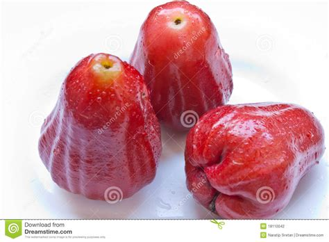 apple thailand rose apple in thailand stock photography image 18110042