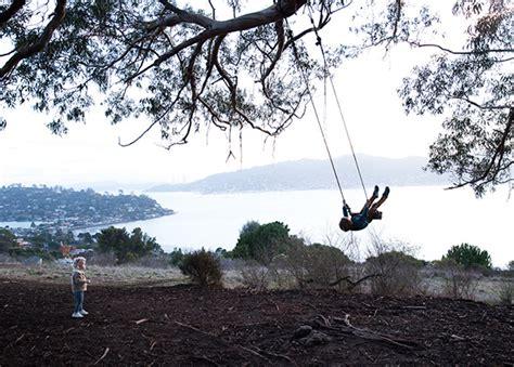 tree swing san francisco hippie tree family sunset adventure say yes