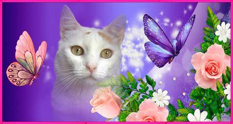 17 mejores im 225 genes sobre variedad flores tejidas en imagenes de osos perritos gatos flores y mariposas