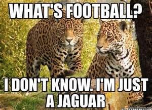 Jaguars Memes Jaguars Meme