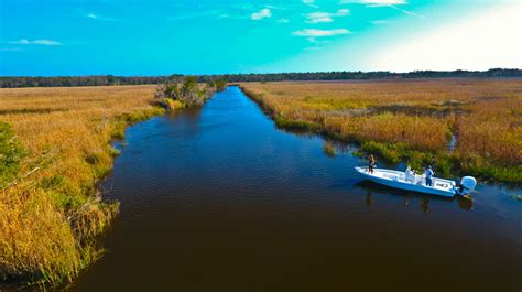 Simon S Guide To In The Us Islands 1 st simons island jekyll island fishing charters and
