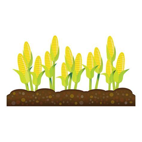 graphics clipart crops clipart