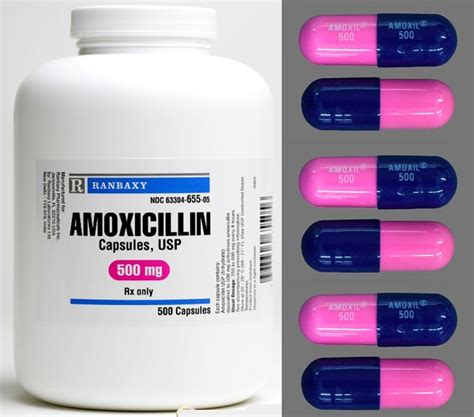 can dogs amoxicillin can dogs amoxicillin dr mahaney