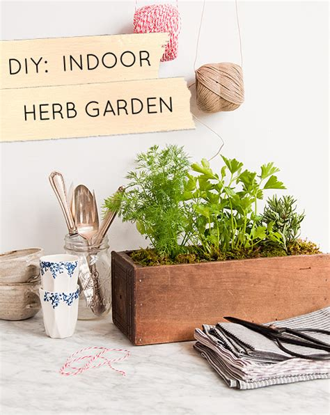 diy indoor herb garden diy kitchen garden planter design sponge