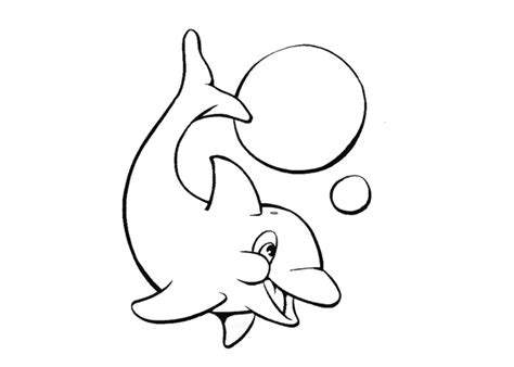 baby dolphin coloring pages baby dolphin coloring page printable book sheet sketch coloring page
