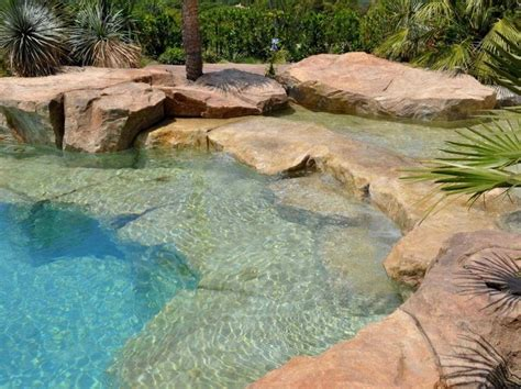 backyard swimming ponds 426 best images about swim pond on pinterest