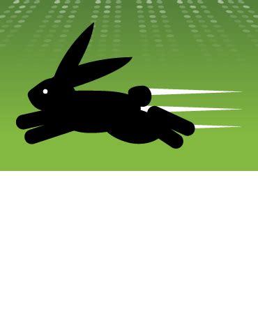 like a bunny fast like a bunny discovery software