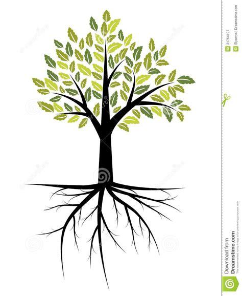 tree illustration royalty free stock photography image
