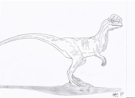 jurassic park dilophosaurus coloring pages coloring pages