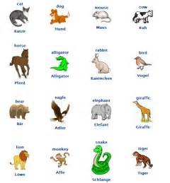 animals vocab german polyglotism pinterest audio