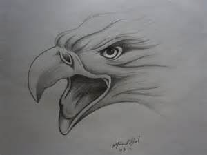 best 10 eagle drawing ideas on pinterest eagle sketch