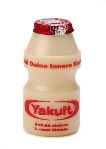 membuat probiotik dari yakult ayo mengenal yakult dan membuat yakult susu fermentasi
