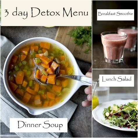 Detox Holidays India by 3 Day Clean Detox Diet My Experience And The