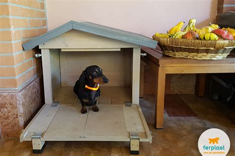 how to size a dog house finding the right size of dog house love ferplast
