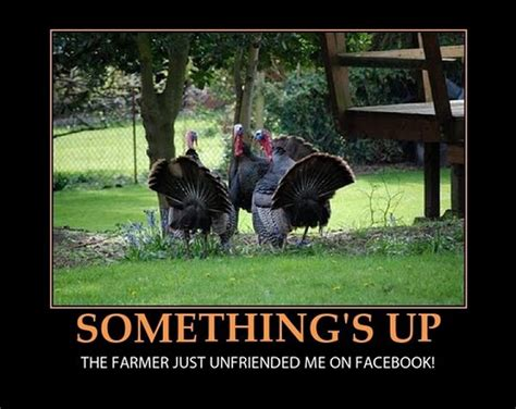Thanks Giving Meme - thanksgiving memes and fun pictures thechive
