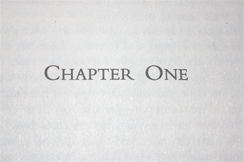 one chapter 1 your chapter getting past the fear writer s edit