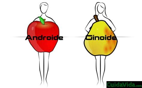 fresh androide  ginoide android hack