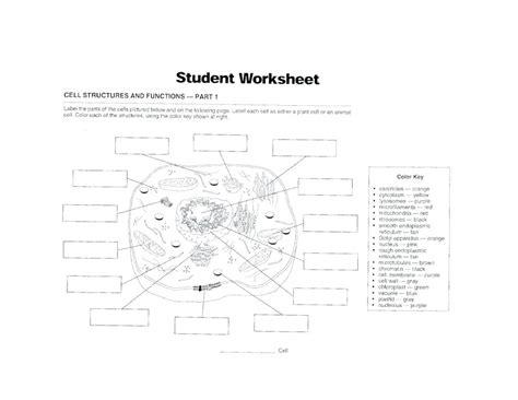 cell membrane diagram worksheet diagram cell membrane diagram worksheet structure and
