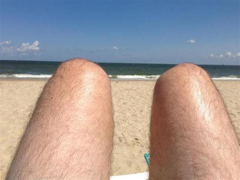 dogs or legs dogs or legs sunmaster