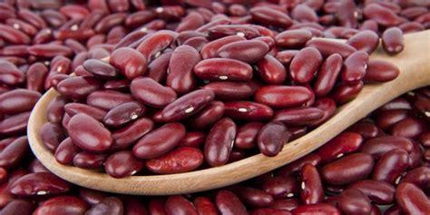 Kacang Jogo Merah 7 khasiat menakjubkan dari kacang merah merdeka