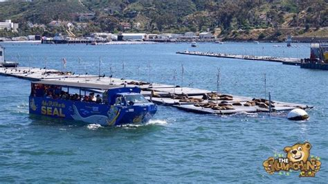 san diego boat tours san diego duck boat tours pinterest duck boat tours