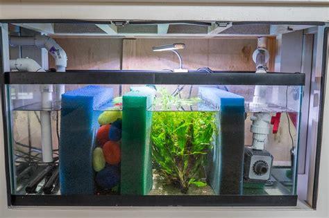 design aquarium filter detailed information on a freshwater sump plus bonus diy